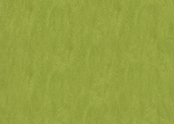 3247 green.jpg