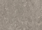 t3146 serene grey.jpg