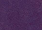 t3244 purple.jpg