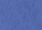 322135 hyacinth.jpg