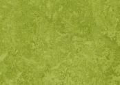 324735 green.jpg