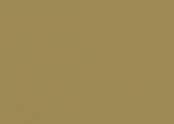 4169 olive.jpg