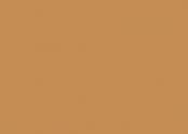 4171 camel.jpg