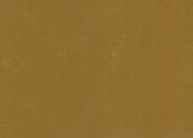 3564 glistening ochre.jpg