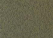 3530 moss.jpg