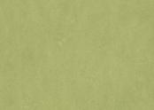 Marmoleum_Fresco-3265_avocado.jpg