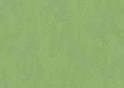 Marmoleum_Fresco-3260_leaf.jpg