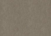 Marmoleum_Fresco-3246_shrike.jpg