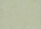Marmoleum_Splash_-3430_salsa_verde.jpg
